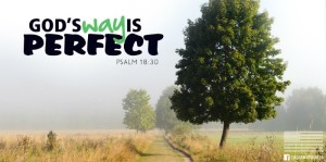God's Perfect Way