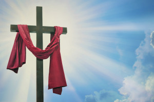 Called to Proclaim the Resurrection – The Weekly Study Guide