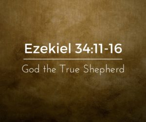 God the True Shepherd