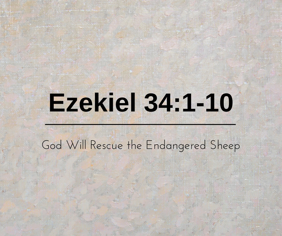 God Will Rescue the Endangered Sheep