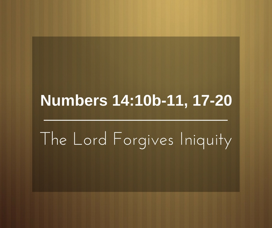 The Lord Forgives Iniquity