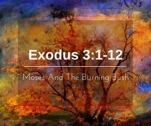 Moses And The Burning Bush – Weekly Study Guide
