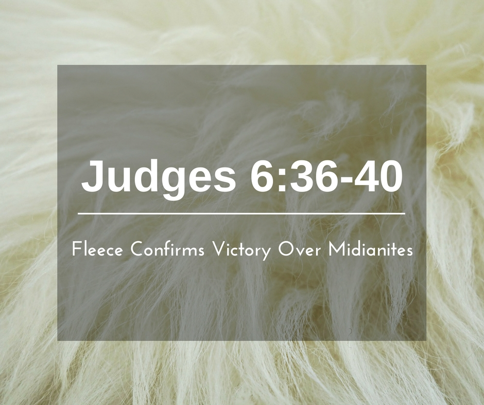 Fleece Confirms Victory Over Midianites