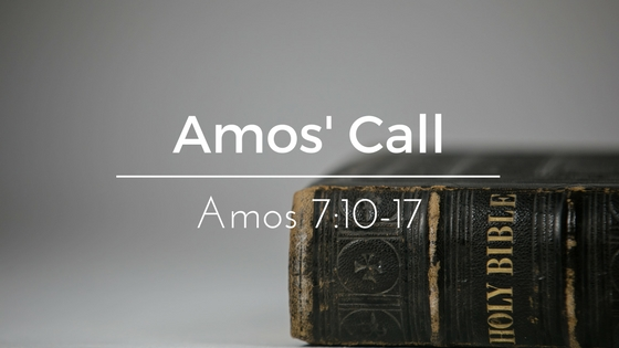 Amos' Call – The Weekly Study Guide