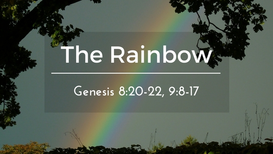 The Rainbow – The Weekly Study Guide