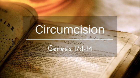 Circumcision – The Weekly Study Guide