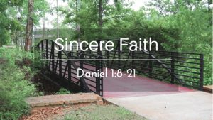 A Sincere Faith – The Weekly Study Guide