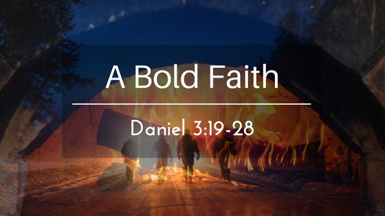 A Bold Faith – The Weekly Study Guide
