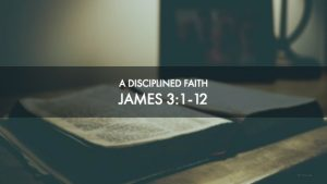 A Disciplined Faith – The Weekly Study Guide