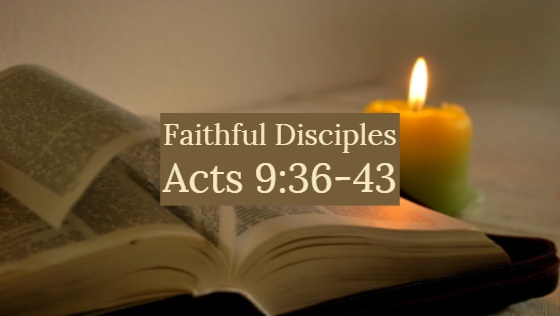 Faithful Disciples – The Weekly Study Guide