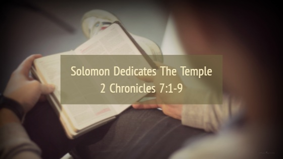 Solomon Dedicates the Temple – The Weekly Study Guide