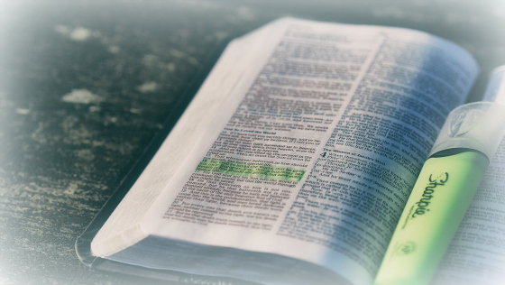 God's Righteous, Impartial Judgment – The Weekly Study Guide